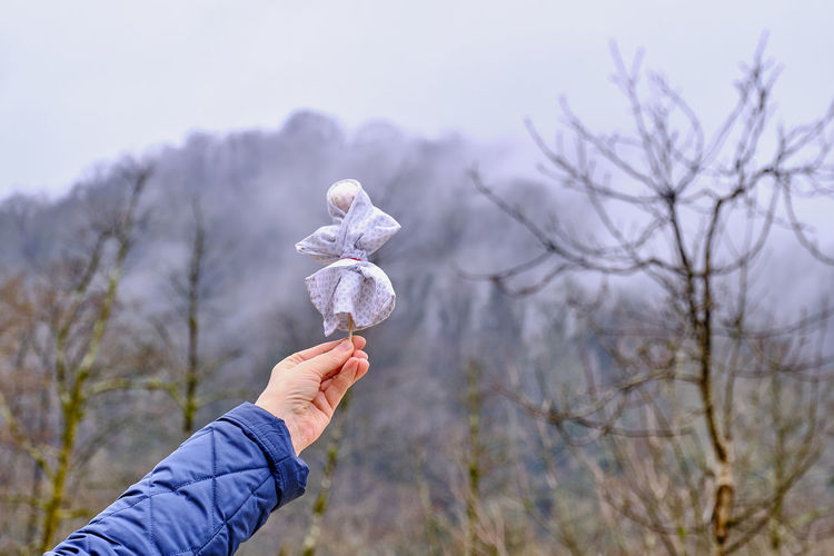 Midsection of person holding plant against trees during winter