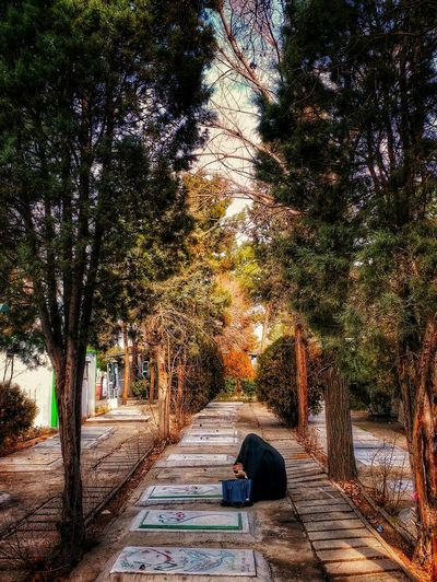 Mother Of An Unknown Martyr Is Mourning At Grave Of Random Unknown Martyrs Iran Memorial Spiritual Martyrs Graveyard Shahid Lifestyles Real People EyeEmNewHere Shades Of Winter