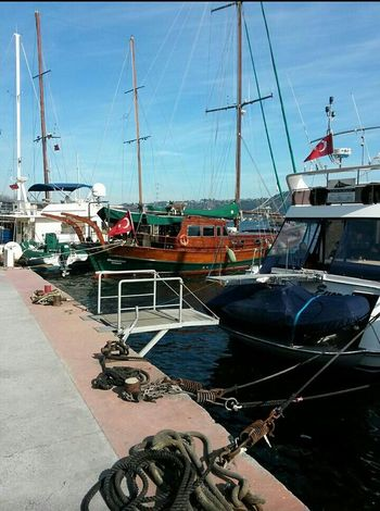 Bebek Istanbul Boat Ride Enjoying Life