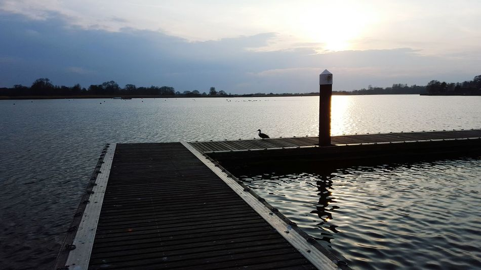 Oulton Broad Trees Sun Sunset Lowestoft Enjoying Life Broads Uk Beautiful River Check This Out Jetty View Jetty