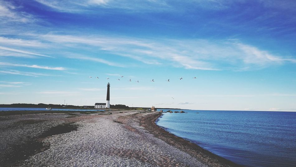 Sea Sky Lighthouse Water Cloud - Sky Beach Horizon Over Water No People Outdoors Nature Flock Of Birds Day HuaweiP9 Estonia Saaremaa Island Sõrve Peninsula Baltic Sea Travel Destinations The Week On EyeEm