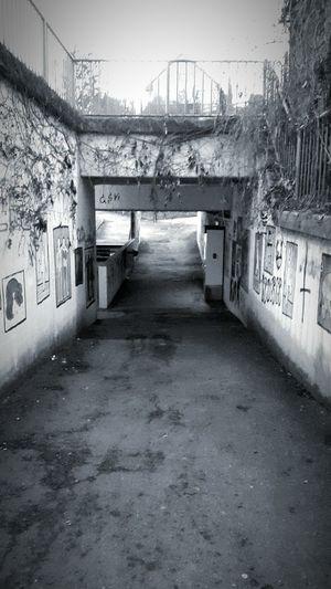 OpenEdit Light And Shadow Bw_collection Underground Trainstation Grafity Ghettolife Eyem Best Edits