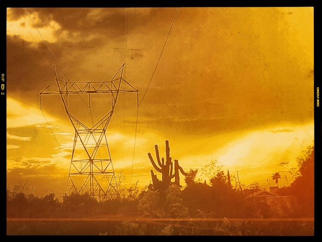 Auto Post Production Filter Beauty In Nature Cloud - Sky Connection Dramatic Sky Electricity  Electricity Pylon Fuel And Power Generation Nature No People Orange Color Plant Power Line  Power Supply Silhouette Sky Sunset Technology Textured Effect Tranquility Transfer Print Tree