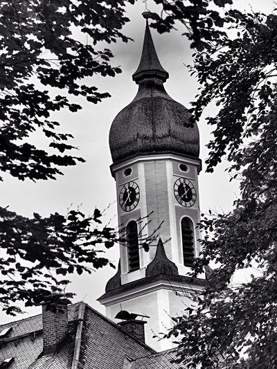 Black & White Autumn🍁🍁🍁 In Bayern Germany