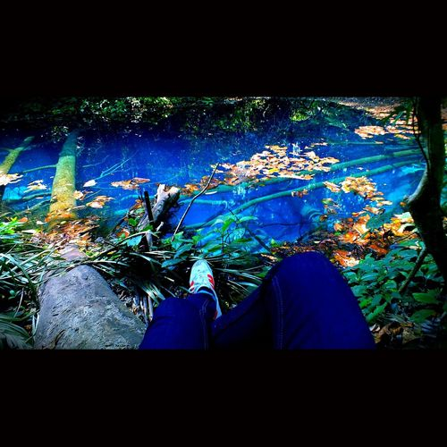 Everything In Its Place Bluelake Nature Behind The Lines Merical Lake On The Mountain Tree Leaves Fairy Tale Magic Lonely Beautiful Nature Watercolor Blue Relax Urban Photography Square Edit Traveling Photography Shoe Blue Jean First Eyeem Photo