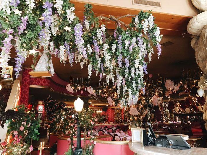 Decoration Decorations Flowers Indoors  Pink Pink Color Restaurant Restaurant Decor