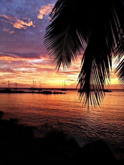 Beach Photography Photography Hollydays Sunshine