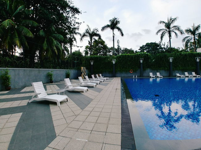 Day Growth Nature No People Outdoors Palm Tree Sky Swimming Pool Tree Water