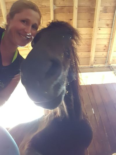 smile Morgan Horse Sweet Young Women Portrait Women Looking At Camera Friendship Close-up Friend Falling In Love