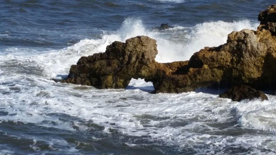 Sea Wave Water