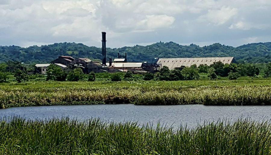 Aguada, Puerto Rico Coloso Sugar Cane Refinery Old Structures Sugar Mill Sugarcane