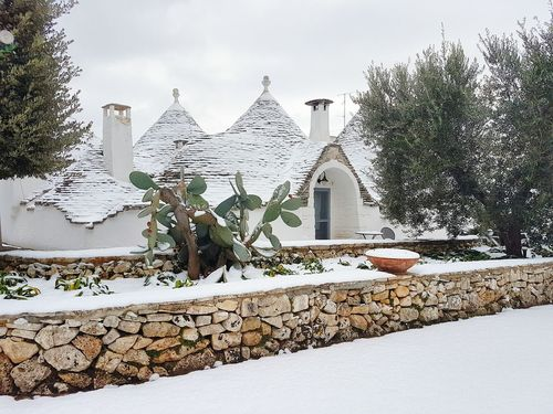 Winter Snow Tree Outdoors Day Cold Temperature Adults Only Nature Sky Snowing Beauty In Nature Christmas Tree People Adult One Person Close-up Trulli Trulli Houses Trullo Alberobello Trullilovers Italia Travel Destinations Puglia Human Body Part