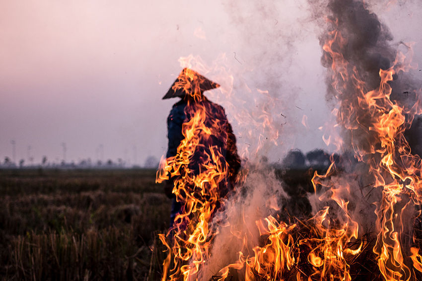 This woman is using an agricultural system in which the fields are cleared by fire which allows fertility transfer and then are cultured for a brief period | Cõ Loa Agriculture ASIA Burning Close-up Culture Day Fertility Field Fields Fire Flame Heat - Temperature Nature Outdoors Smoke The Photojournalist - 2017 EyeEm Awards Vietnam Woman Working The Week On EyeEm