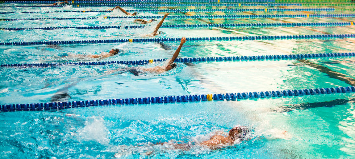 High Angle View Of Swimmers Swimming In Pool