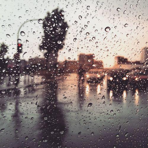 Raindrops Rain Love Rainy RainyDay Raindropshot France Paris Raining Rain Day