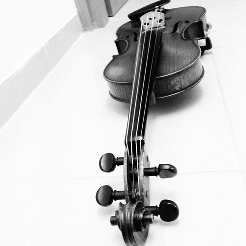 My everything, My joy- my violin. Detailsofmylife