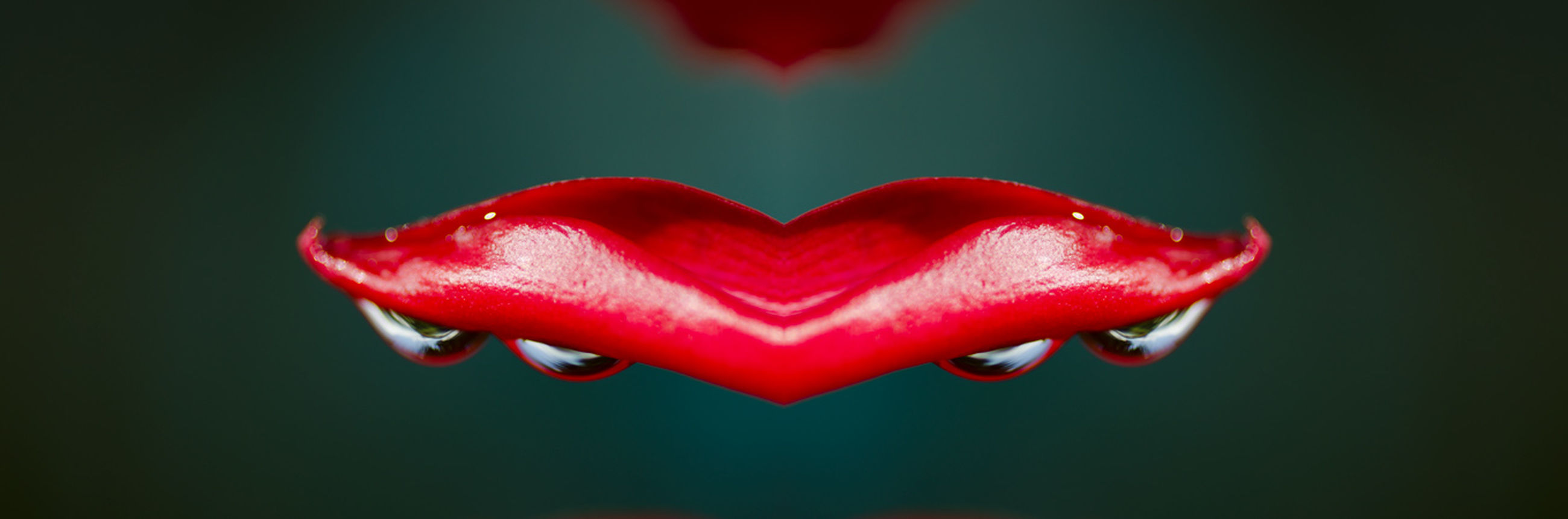 red, heart shape, love, close-up, studio shot, no people, red color, freshness, day