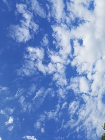 Sky And Clouds Sky Backgrounds Blue Sky Only Abstract Full Frame Textured  Sky Cloud - Sky Stratosphere Heaven Cloudscape Fluffy Wispy Cumulus Cloud Abstract Backgrounds Dramatic Sky