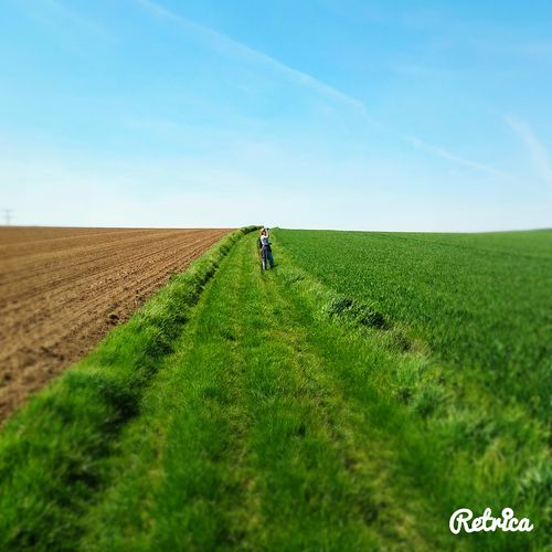 having fun with the retrica app ! Retrica Picardie Lost In The Middle Of Nowhere Fieldscape Fields Springtime Green Green Green!  Hikingadventures Hiking Trail Horizon Over Land The Great Outdoors With Adobe Ourdoors Landscape