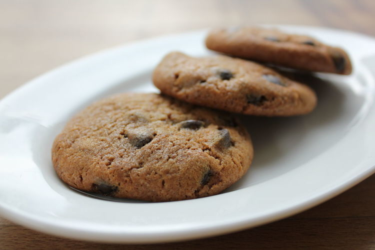 Close-up of chocolate chip cookies served in plate on table