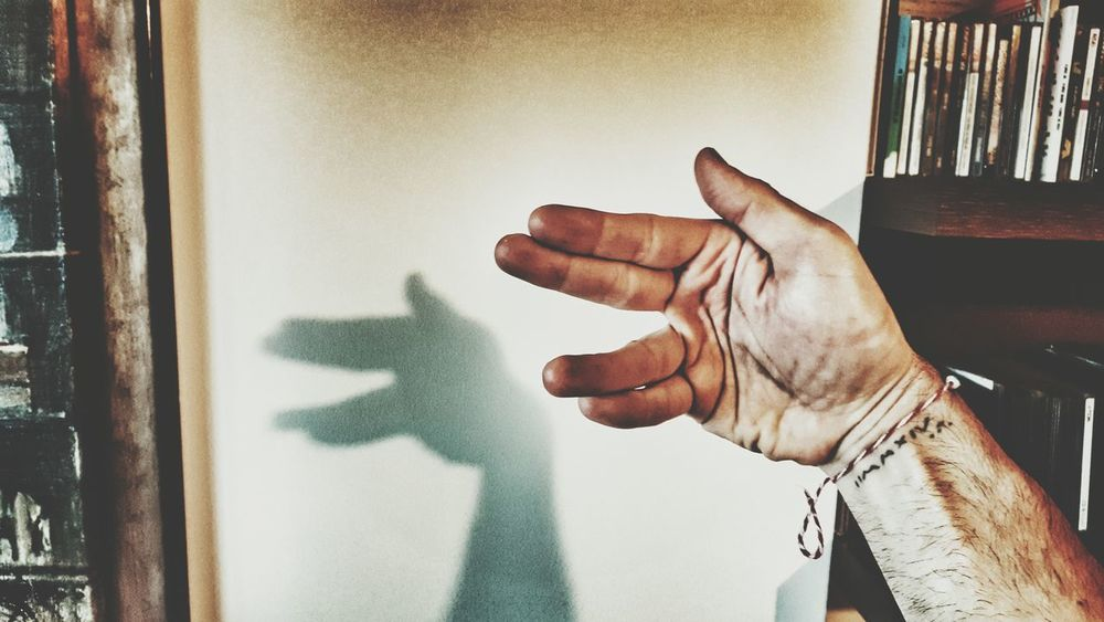Learn & Shoot: Balancing Elements Shadow Learn & Shoot: Single Light Source Wolf Hand Man's Hands Getting Creative Creative Light And Shadow Smartphonephotography Samsung Galaxy S6 Edge EyeEm Best Edits Malephotographerofthemonth Shadows Shadows & Lights Experimenting...