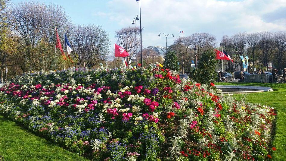 Rond Point des Champs Elysees Paris, today.Spring is coming.. Avenue Des Champs Elysees ChampsElyseesParis Champs-Élysées  Champs Elysees Bonjour Paris Paris Je T Aime Paris ❤ Champselysées Rondpointchampselysees Springtime
