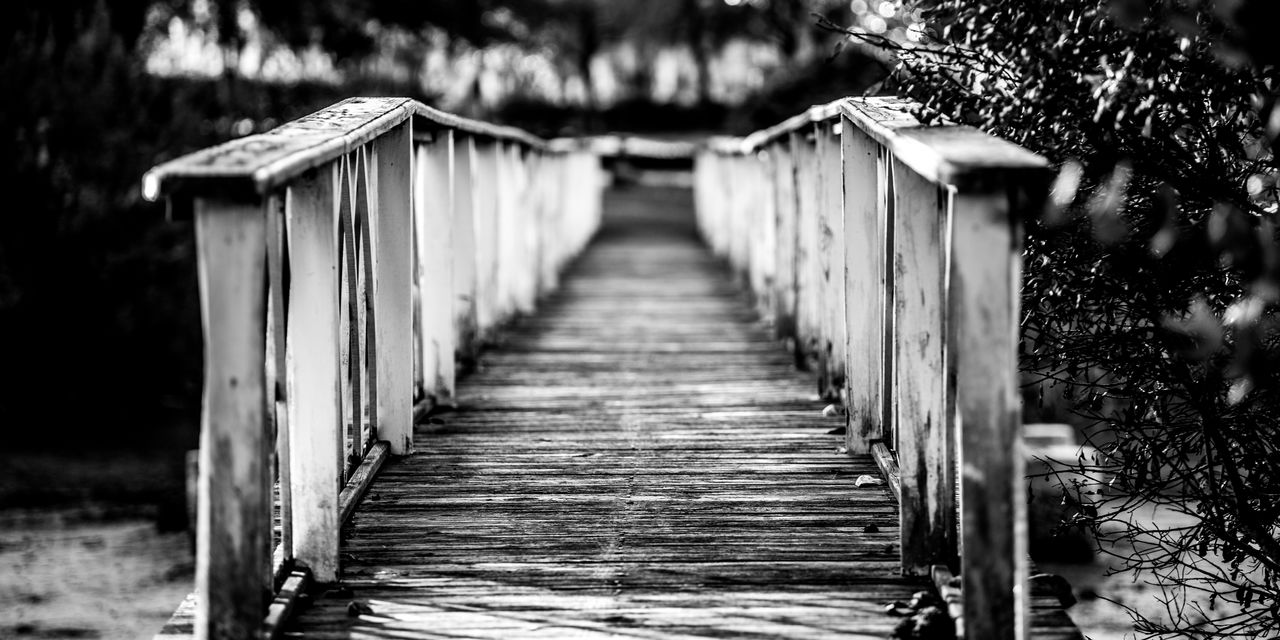 Bonaventure Cemetery in Savannah Georgia Bonaventure Cemetery Georgia Savannah Black And White Bridge Day Nature No People Outdoors The Way Forward Black And White Friday