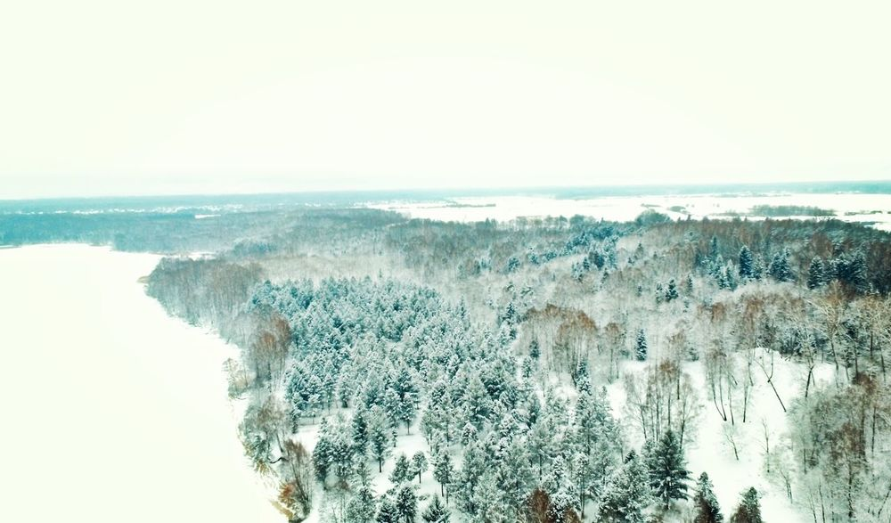 Nature Ice Snow Trees Ariel Drone