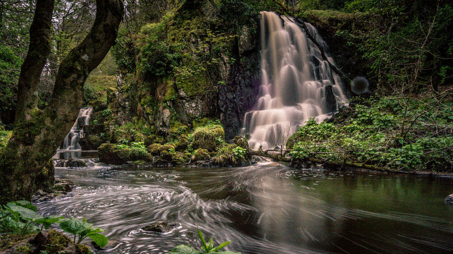 Linn Jaw Eyeem Scotland  Water Waterfall Landscape West Lothian