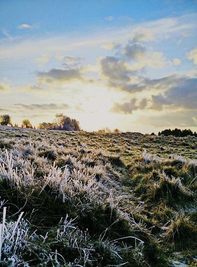 Heimat. Winter Sunset Landscape