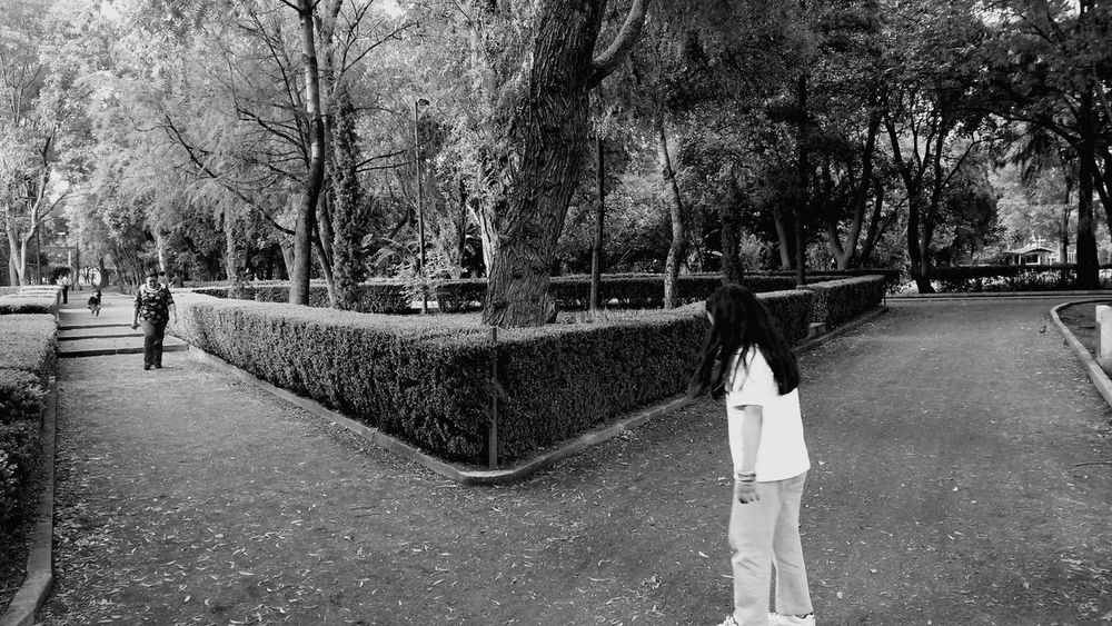 Coyoacán Black And White Black&white Beauty In Nature Tranquil Scene Nature Blackandwhite Blancoynegro Blanco Y Negro Blancoynegrofoto Blanco Y Negro, Blanco Y Negro Fotographia People Blanco Y Negro. Black And White ❤ Park Tranquility