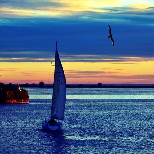 Buenos Aires harbour..⛵