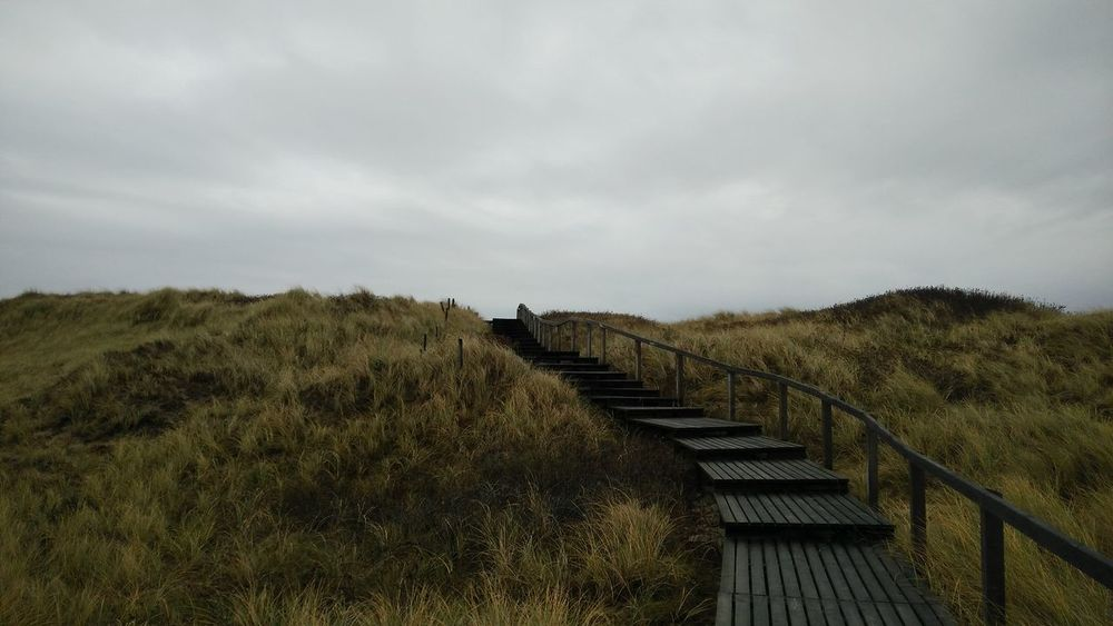 Into the Clouds. · Rantum Sylt Germany Island Nordsee Nature Landscape Steps Planks Grass Coast Clouds And Sky Gray Sky The Purist (no Edit, No Filter)