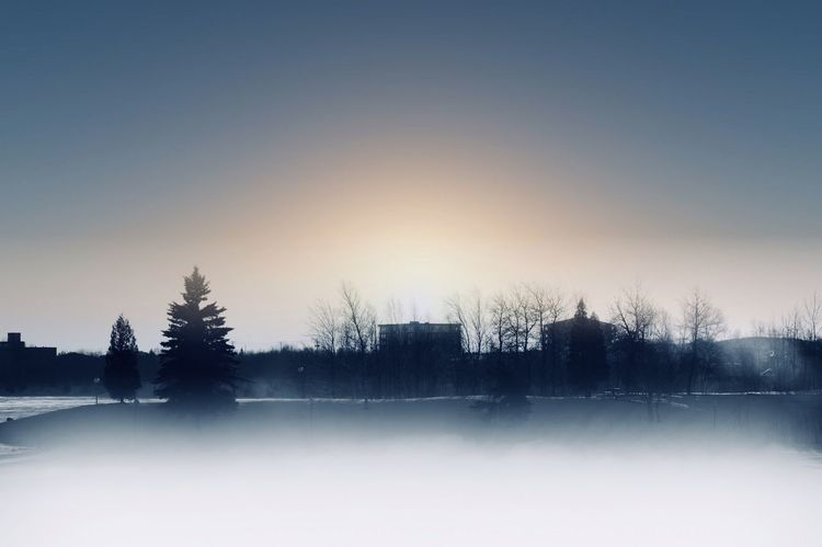 Cold Temperature Winter Snow Nature Tranquil Scene Tranquility Beauty In Nature