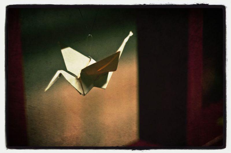 Nipponfest Hangukon Origami Origami Cranes