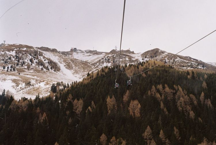 Ski lift ride towards 2000m. Ski Lift Snow ❄ Winter Cold Temperature Day Film Photography Forest High Altitude Landscape Mountain Nature No People Outdoors Scenics Ski Resort  Trees And Sky