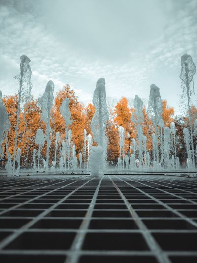 Digital composite image of plants and trees against sky