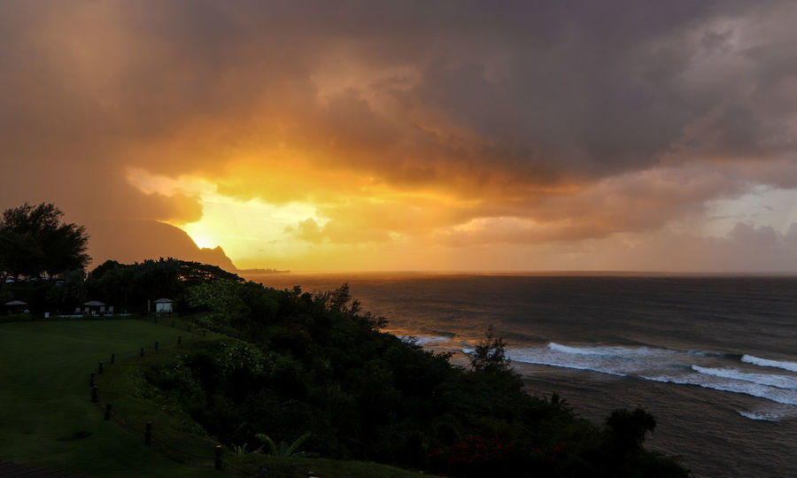 Sunset from Puu Poa Hawaii Kauai Beach Beauty In Nature Cloud - Sky Horizon Over Water Nature No People Outdoors Princeville Scenics Sea Sky Sunset Sunset #sun #clouds #skylovers #sky #nature #beautifulinnature #naturalbeauty #photography #landscape Travel Destinations Tree Water Yellow Sky