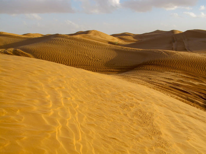 Tunisia travel holidays Land Scenics - Nature Sand Landscape Beauty In Nature Sand Dune Tranquility Desert Climate Tranquil Scene Sky Arid Climate Non-urban Scene Environment Nature No People Remote Cloud - Sky Idyllic Day Outdoors Atmospheric