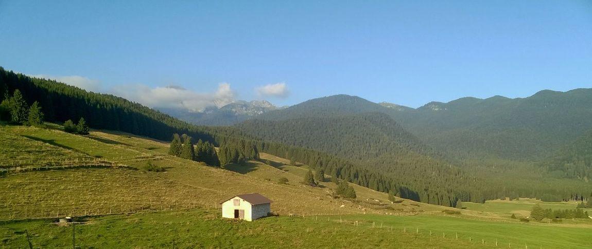 Cansiglio Landscape Malga Mountain