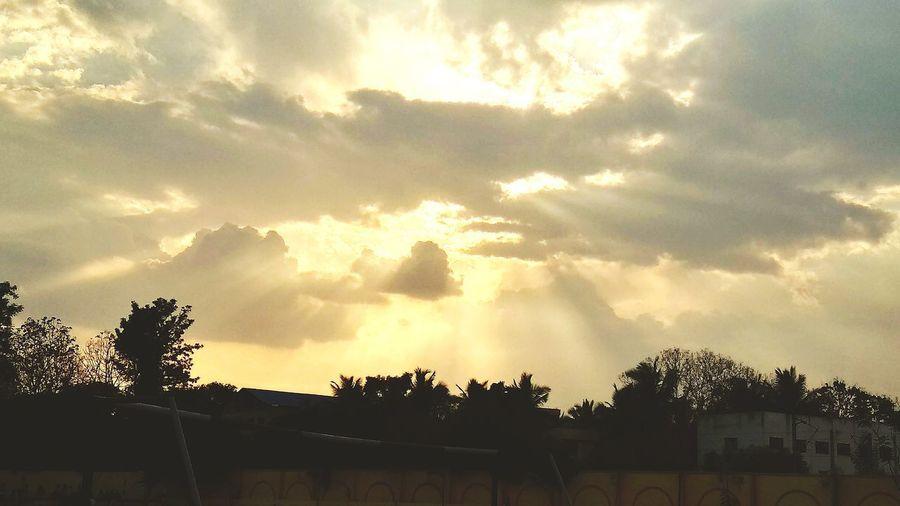 Sky Blessed  Fromsky From Sky Tree Silhouette Sky Cloud - Sky
