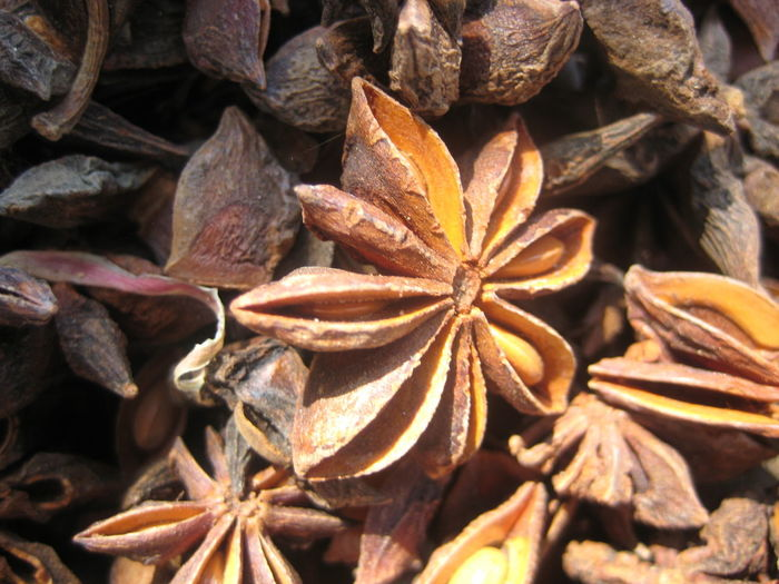 Backgrounds Brown Close-up Cloves Detail Focus On Foreground Full Frame Large Group Of Objects Natural Pattern Nature No People