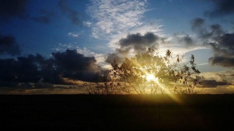 Sunset Natureza Nature Pordosol Pernambuco -Brazil