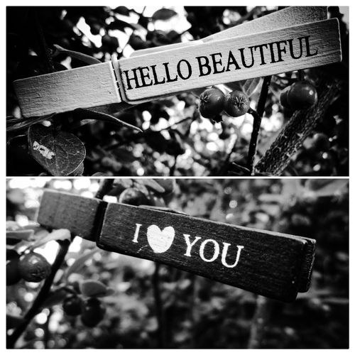 Love Beautiful Word Emotions Blackandwhite Blackandwhite Photography Black And White Photography Blackandwhitephotography