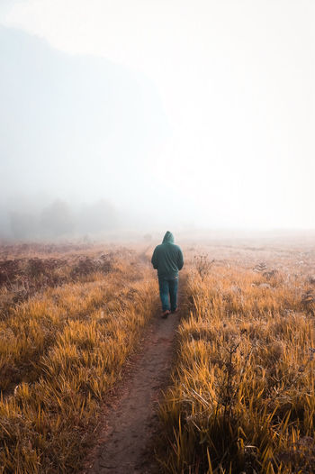 Rear view of man walking on field