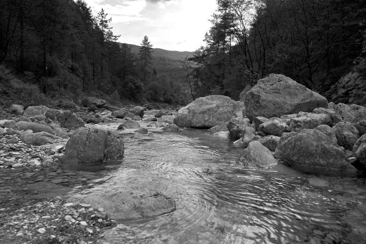 BeW Friuli Venezia Giulia Fvg Moulin Bianco E Nero Black And White Campone Campone Italy Friuli Mountain Mulino Pordenone River Torrent Torrente Water Torrent