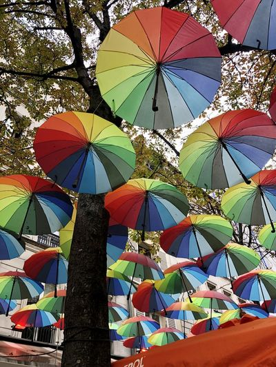Low angle view of umbrellas hanging at market stall