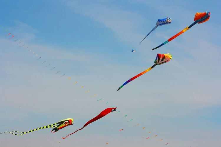 A flock of .... kites? Wind Festival 2017, Valencia, Spain Beach Activities Beach Sports Flying Kite - Toy Kite Festival Kite Festival Valencia Kites Kites Festival Kites Flying Kites In The Sky Lifestyles Multi Colored Outdoors Sky Teamwork Weekend Activities
