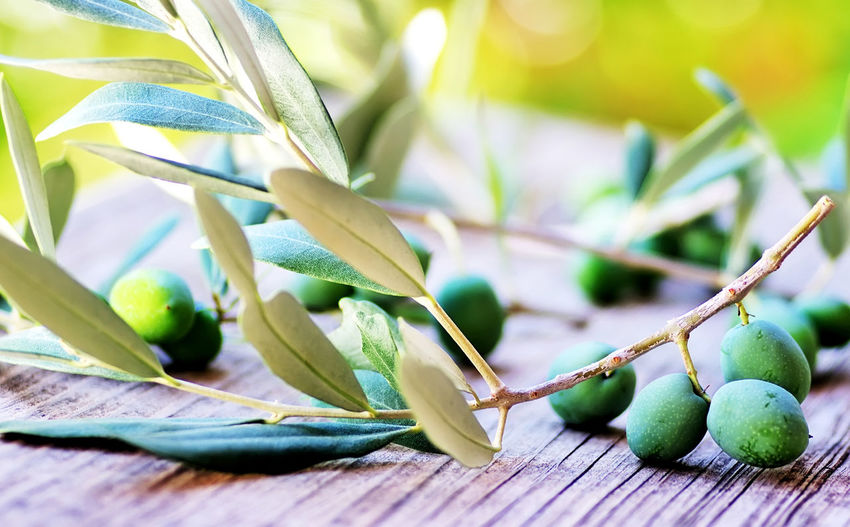 Green olives and leaves on table