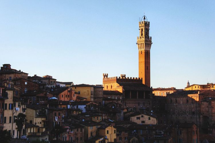 Torre Del Mangia In City Against Clear Sky
